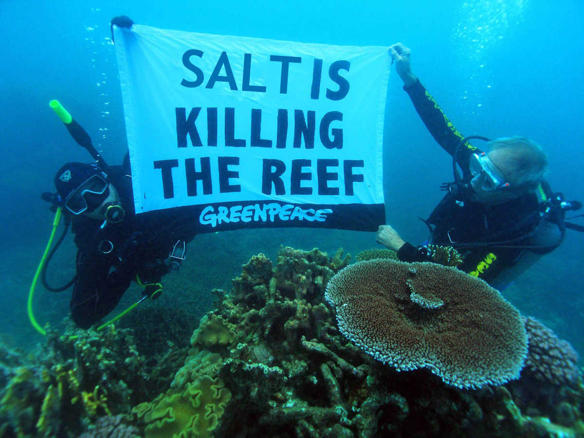 """A LNP-sponsored newspaper ad that clearly shows that Greenpeace is """"out of touch"""" with ocean enthusiasts SOURCE: LNP Brisbane"""