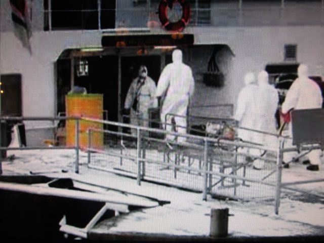 """Cleaning crews ender the Carnival Spirit this morning to deal with """"vomit"""". PHOTO: 9NewsNow"""