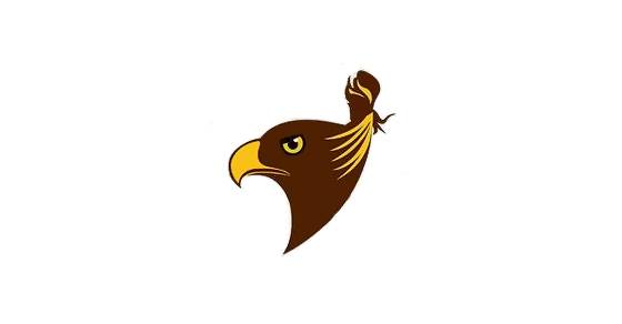 """The new """"unofficial"""" logo for the Hawthorn Hawks shows a Hawk with a top-knot."""
